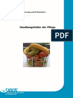 Praevention-Handlungsfelder-der-Pflege-2011-08-23