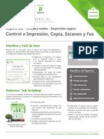 folleto-papercut