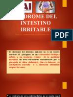 SINDROME DEL INTESTINO IRRITABLE- PRESENTACIÓN DIDÁCTICA