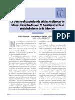 Dialnet-LaTransferenciaPasivaDeCelulasEsplenicasDeRatonesI-2663407