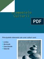 -Elementele-Culturii