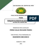 Pérez Solis Tesis