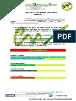 Actividades del servicio social obligatorio ambiental. 2021