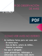 TALLER DE OBSERVACIÓN DE AVES B