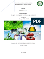 Sinopsis Cronologia de Biotenologia Ambiental