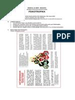 Modul 21 BDR (Psikotropika) - ESD