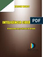 Inteligencia_Cibernetica_livro