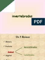 invertebrados fund 2