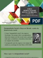 Desigualdade Social e Raça No Brasil