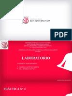 Practica N°4 Parasitología Médica (1)