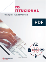 16310565 Principios Fundamentais (1)