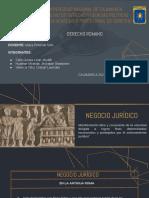 Negocio y Acto Jurídico (1)
