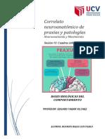 Sesión 13. BBC. diagrama del correlato neuroanatomico de praxias . Patologías