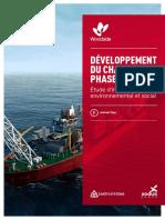 developpement-du-champ-sne-phase-1---etude-d-impact-environnemental-et-social