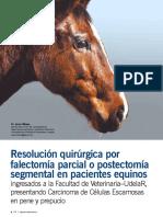 resoluci__n_quir__rgica