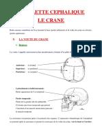 Le-crane-osseux