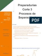 Preparaduría Corte 3 PS1.Pptx