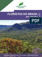 Florestas_Brasil_2019_Português
