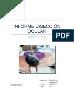 informe-disección-ocular-avanze