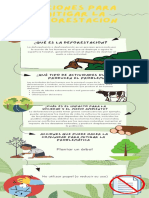 Deforestacion ecologia