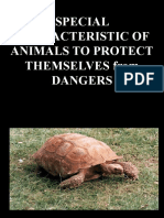 SPECIAL CHARACTERISTIC OF ANIMALS TO PROTECT THEMSELVES FOR