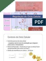 Ana_Gomes_-_Regulacao_do_ciclo_celular