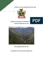Estudio de Mercado en La Region Sur Del Pais