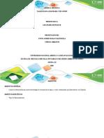 Anexo 1 - diagrama de gowin
