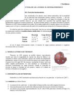 TEMA_5_MODELOS_ATOMICOS_SISTEMA_PERIODICO