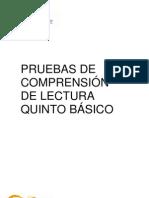 PRUEBAS DE COMPRENSIÓN DE LECTURA 5º BÁSICO