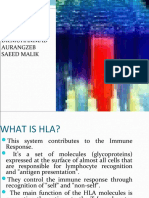 Hla Tissue Typing