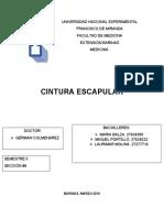 Qué Es La Cintura Escapular (1)