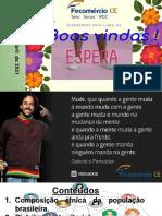 Aula 21 _ População brasileira.