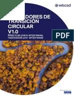 Guía Indicadores de Transición Circular (CTI) V1.0