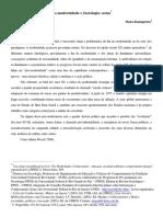 f3322312 Notas Sobre P Smodernidade e Sociologia Final2 Site Rtf File Conversion to PDF