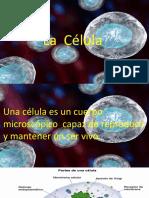 Clase CLEI III Ciencias Naturales 280421 La Célula