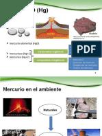 Exposicion Dinamica Ambiental Del Mercur