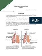 Guía 1 La voz y el diafragma