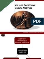 Processos Conativos I