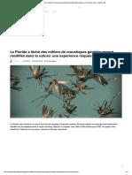 La Floride a lâché des milliers de moustiques génétiquement modifiés dans la nature_ une expérience risquée - Business AM