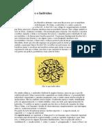 A Lei Islâmica e o Indivíduo