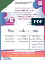 Exemple-de-proiecte_MMarin