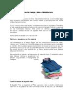 Actividad-3-Evidencia-2-Taller-Camisa