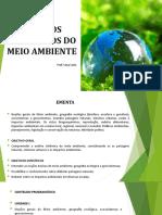 Estudos Integrados Do Ambiente Aula 01
