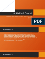 ACTIVIDAD GRUPAL