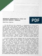 Bruyas - Técnica, estrutura e visão em Grande sertão
