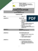 Syllabus - CHIEF EXECUTIVE OFFICER - 2011