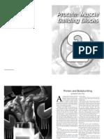 Bodybuilding Nutrition 2 - Proteins