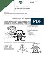 Nº1_Ciencias_2º PDF