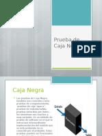2___Prueba_de_Caja_Negra___Compartir.pptx